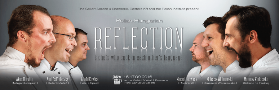 Polish-Hungarian Reflection